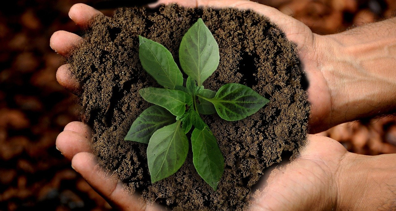 Progetto Valbioagri, Il Webinar Sulle Pratiche Agroecologiche Per La Conservazione Del Suolo